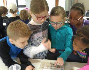 Ex Corde Schola réseau catholique instruction en famille Partager
